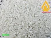 504 White Rice 25% Broken