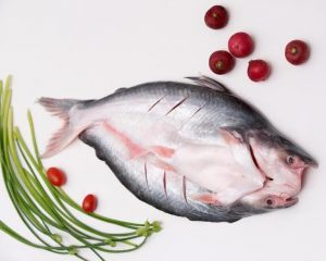 BUTTERFLY-CUT PANGASIUS
